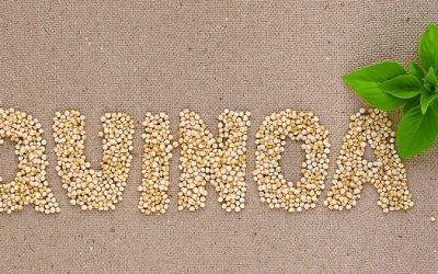 Quinoa and Beans: The Superfood Power Couple