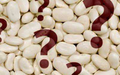 What's the Difference Between Beans and Legumes?