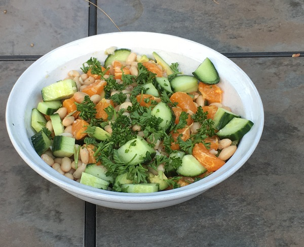 Citrus Avocado Bean Salad