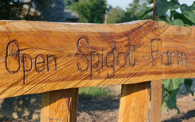 Summer Highlights at Open Spigot Farm