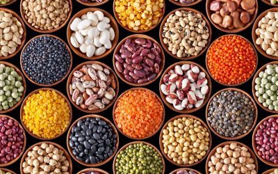 Beans Play a Major Role in Alzheimer's Prevention