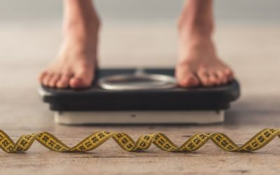 Bean Protein Is Key To Weight Loss